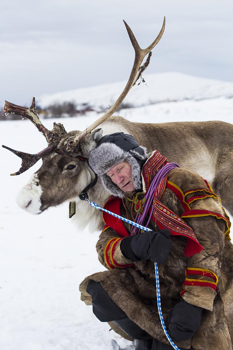 renna e Sami