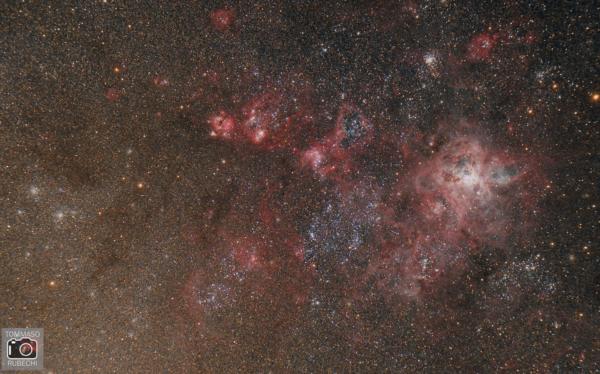 Nebulosa Tarantola (NGC 2070)